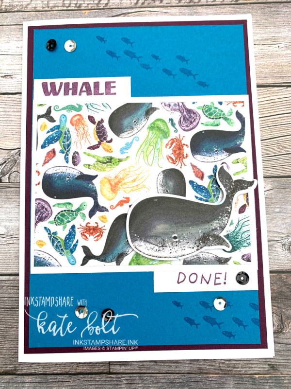 Birthday card using the Whale Done stamp and  punch bundle  and  the Whale of a time papers from Stampin Up! With sea turtles in Pacific Point and  Blackberry Bliss.
